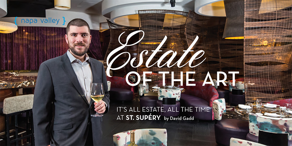 Estate of the Art by David Gadd cover photo